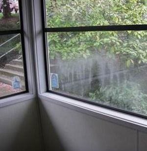 Insulated Window Replacement